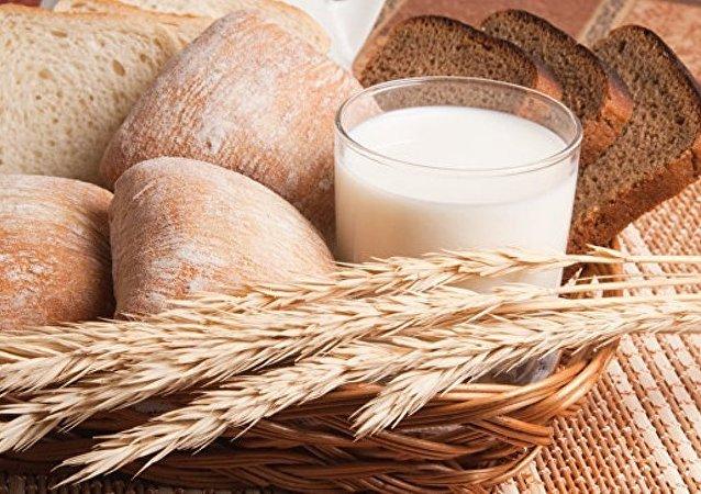 俄羅斯將生產含石蕊成分的食療麵包