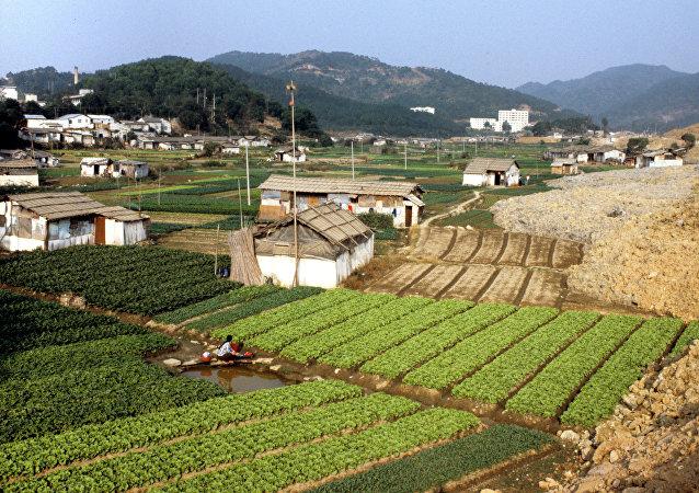 2017年中國農產品貿易逆差增長速度同比增長超過30%