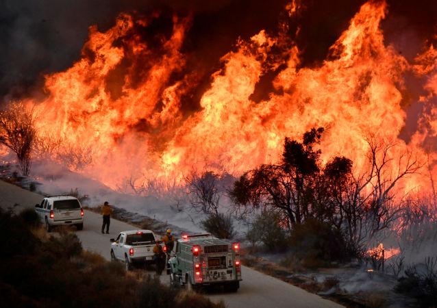 俄總理就加州大火造成人員死傷向美副總統親自表示哀悼