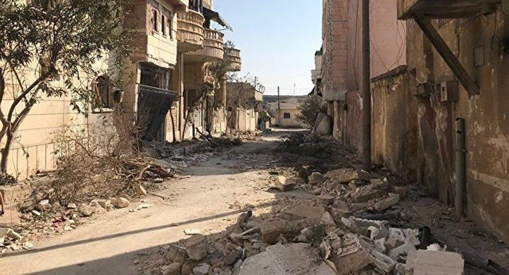 土外長:土軍在敘阿夫林的行動將在5月前結束