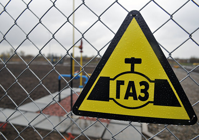 德經濟部長:無理由擔心2019年後俄經烏過境天然氣運輸會受到威脅