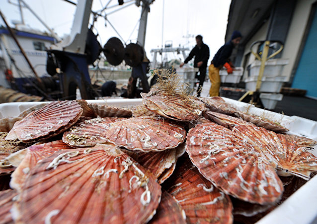 俄鐵路新服務已將2200多噸魚類產品從濱海邊疆區運至中國