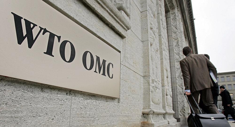 俄G20事務協調員:俄方希望WTO改革將是G20峰會一大議題
