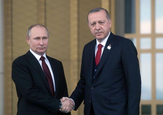 俄土總統下令啓動阿庫尤核電站建設