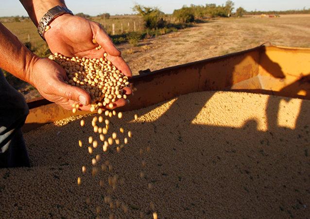 中國下調部分亞洲國家進口貨物關稅 大豆進口關稅調降至零