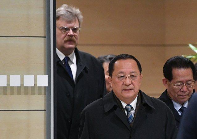 Министр иностранных дел КНДР Ли Ён Хо (на первом плане) во время встречи в аэропорту Домодедово