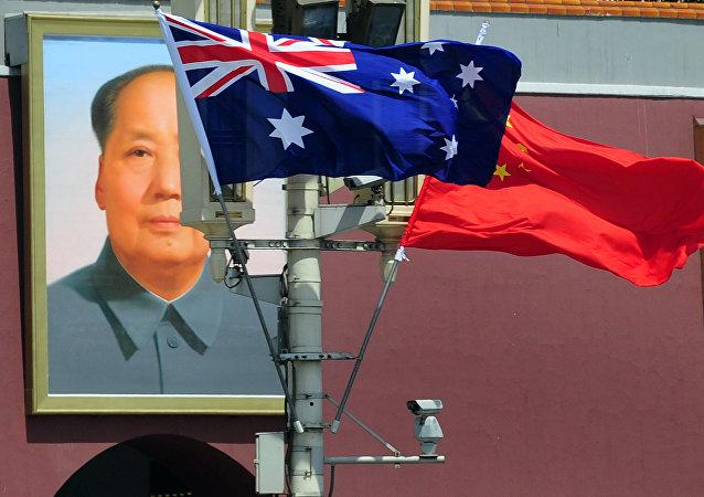 澳大利亞應以新西蘭為例,與中國構建關係