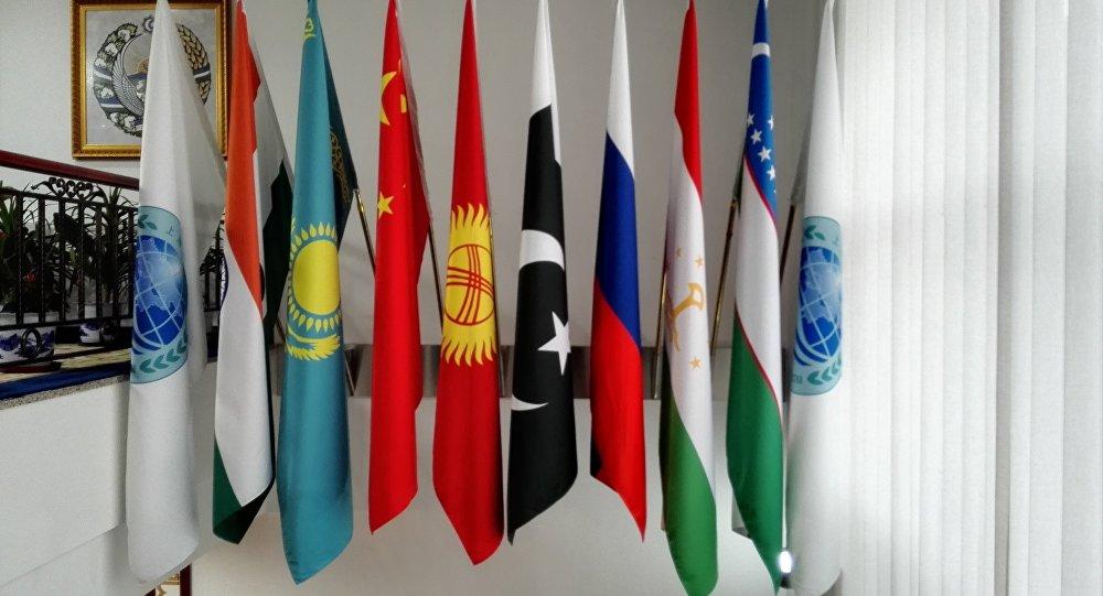 上合組織:個別國家或國家集團單方面不受限制地發展反導系統損害國際安全