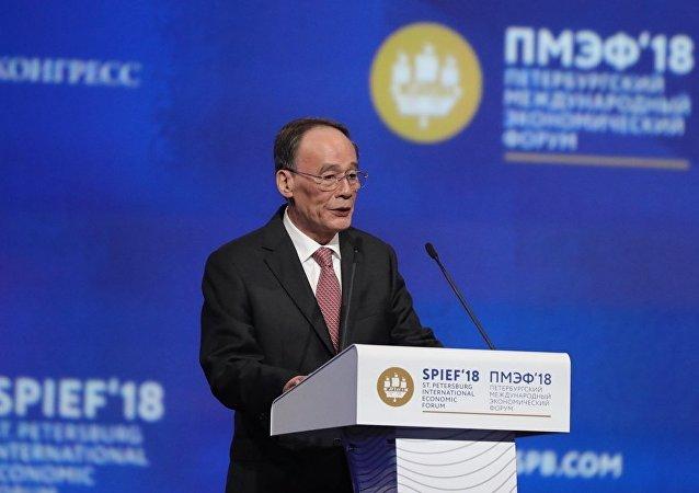 中國國家副主席王岐山在聖彼得堡國際經濟論壇全體會議上