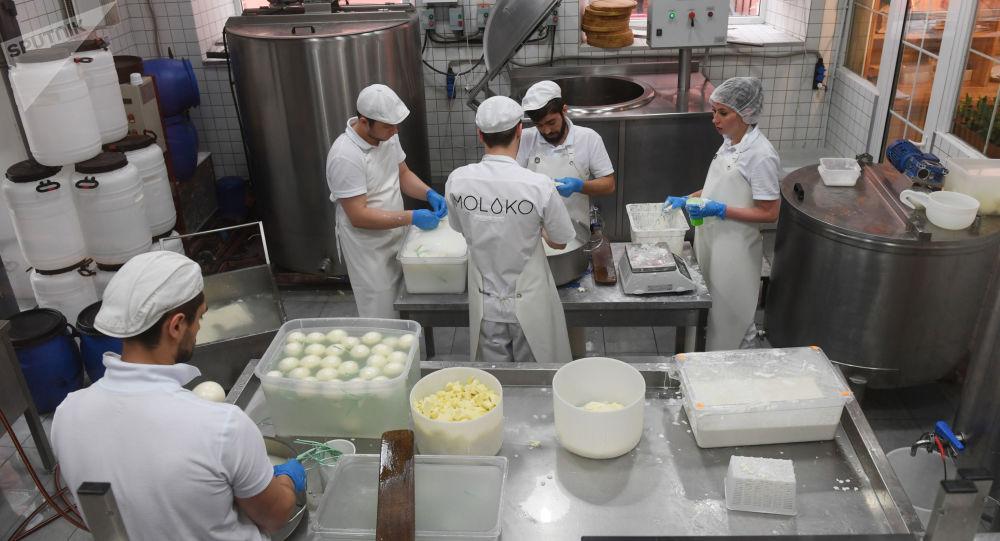 莫斯科奶酪工廠餐館在生產奶酪。