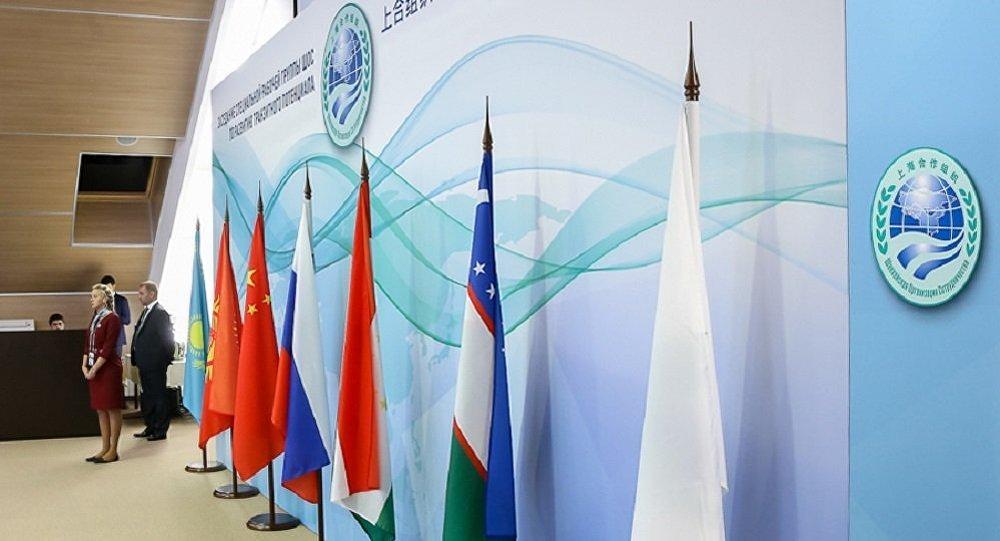 普京:金磚國家和上合峰會舉辦地點改為聖彼得堡