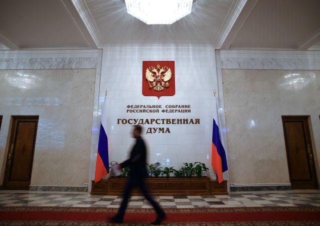 俄中議員之間的會見一直是建設性的