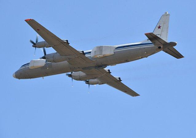 伊爾-22PP伐木人飛機