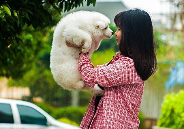 科學家們發現狗對其主人表情的反應
