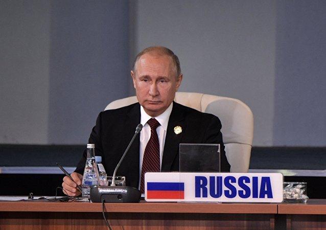 普京在金磚國家領導人會議上(資料圖片)