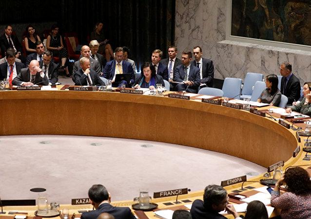 英常駐聯合國代表:因索爾茲伯里中毒案新進展 英將審議擴大對俄制裁的問題