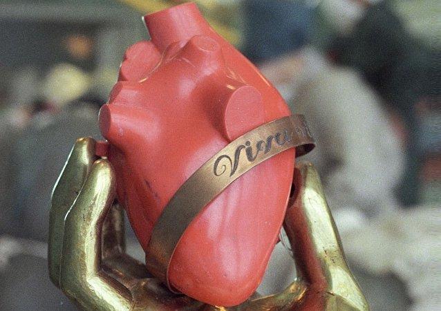 人心臟模型