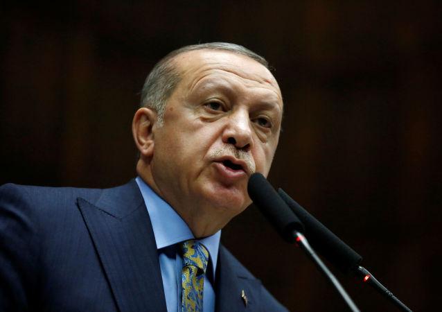 土耳其總統稱其很有可能於下周會見普京
