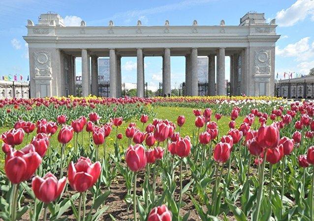 莫斯科高爾基文化公園(資料圖片)