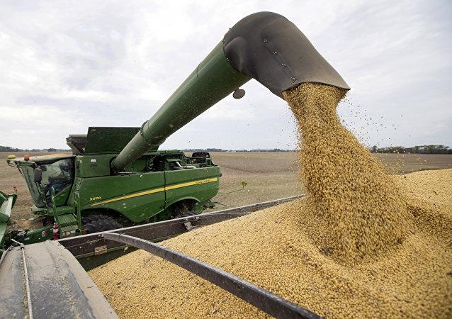 中國農業農村部長:中國糧食安全完全有保障