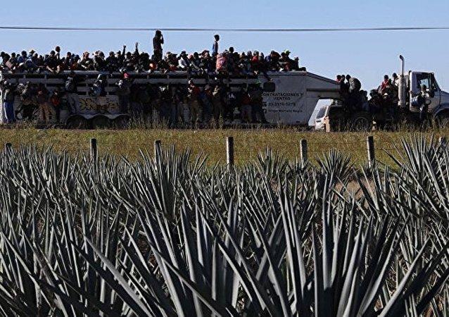 首批「大篷車移民」已抵達美墨邊境