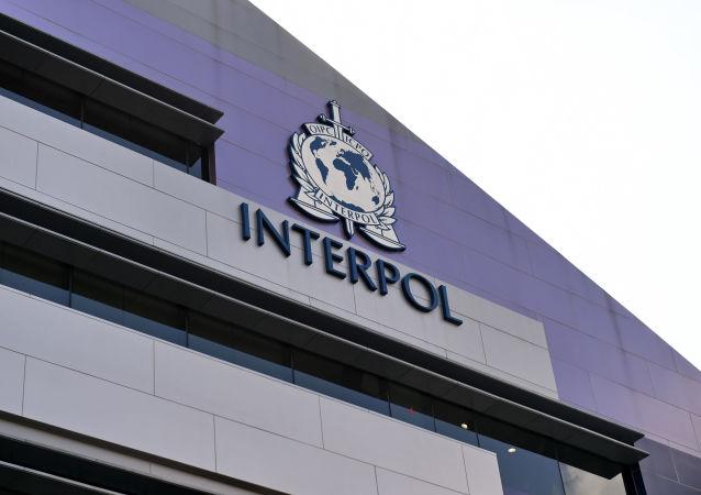 國際刑警組織(新加坡)
