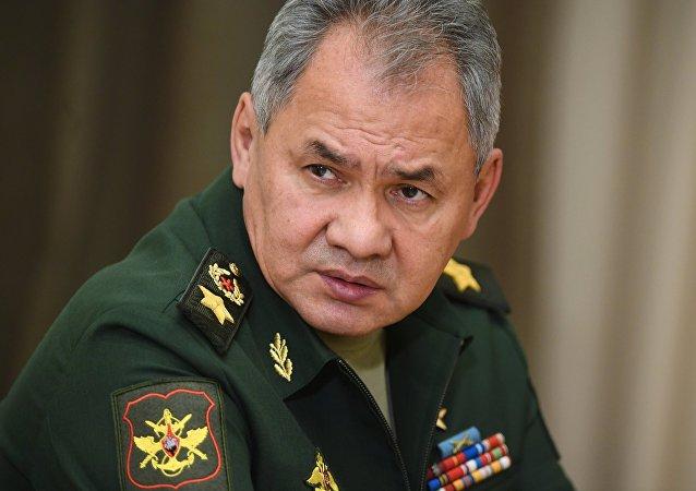 俄防長:2025年俄軍合同兵數量將超47.5萬