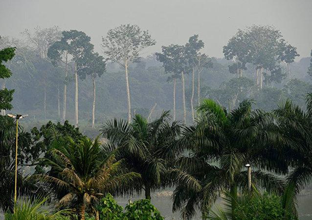 科學家警告:熱帶地區人類或因升溫面臨滅絕危險