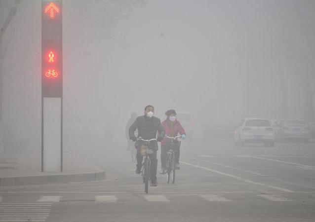中國崑山杜克大學學者稱清潔空氣可能具有危險性