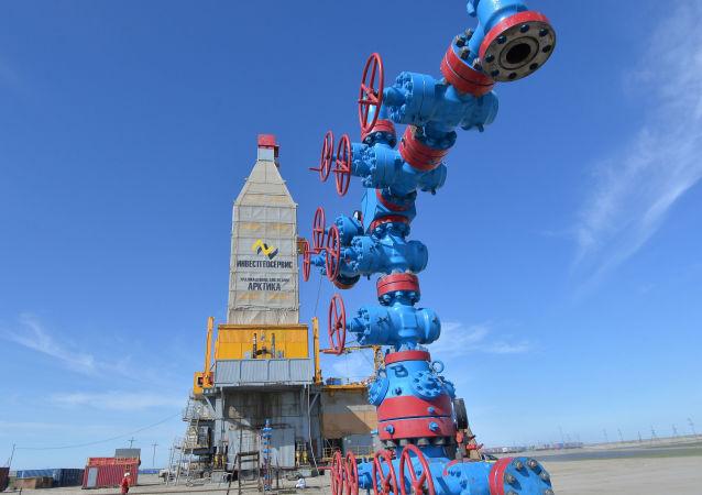 普京宣佈啓動哈拉薩維氣田的全面開發