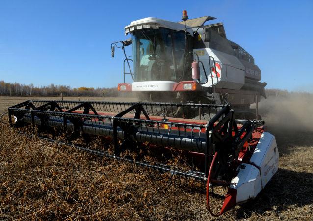 中國取消俄羅斯大豆進口限制將給俄農業發展注入活力