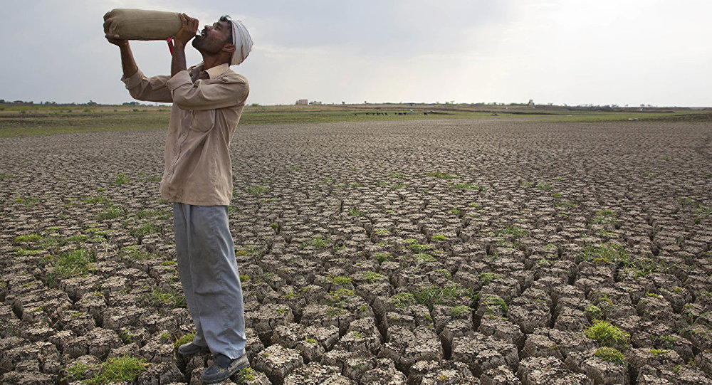 有必要擔心疫情導致全球大飢荒嗎?