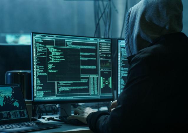 普京:信息技術領域犯罪數量6年增加9倍