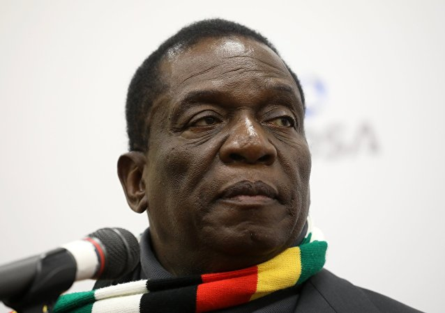 津巴布韋總統