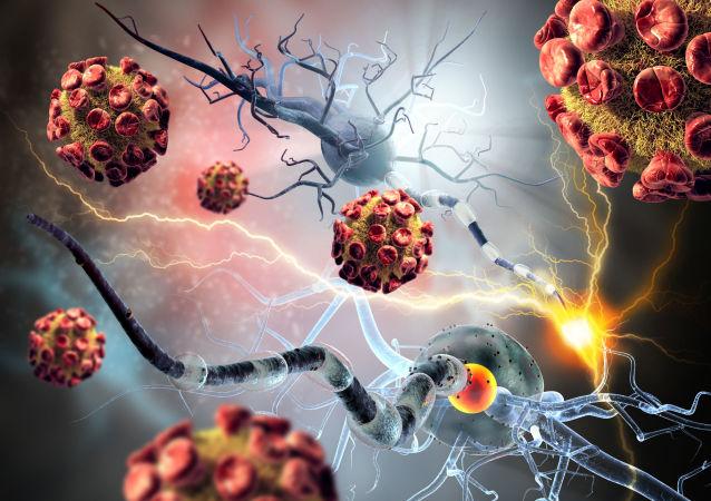 傳染病專家不排除冠狀病毒在神經細胞中繁殖的可能