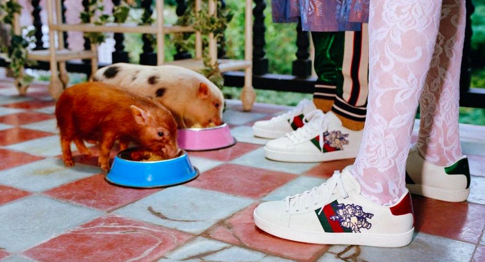 Лукбук Gucci для капсульной коллекции к китайскому Новому году