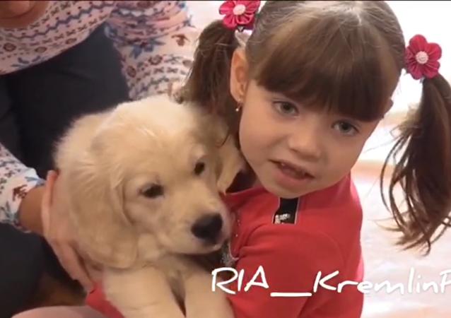 普京滿足俄遠東自閉女孩新年願望贈其金毛幼犬