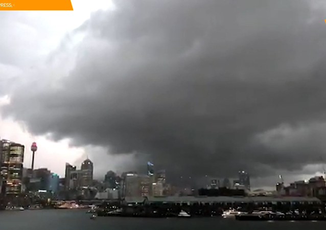 悉尼強風暴致4萬戶家庭斷電