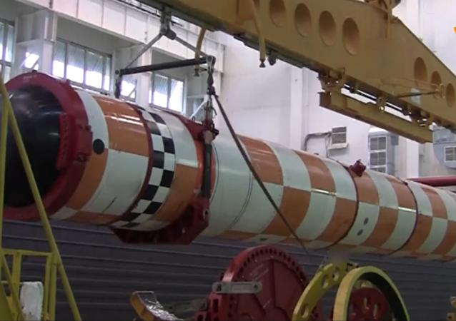 「波塞冬」無人潛航器成功通過海上試驗場試驗