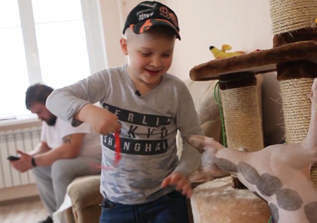 6歲小男孩幫150只動物找到新家