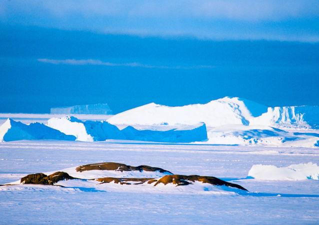 南極自然環境