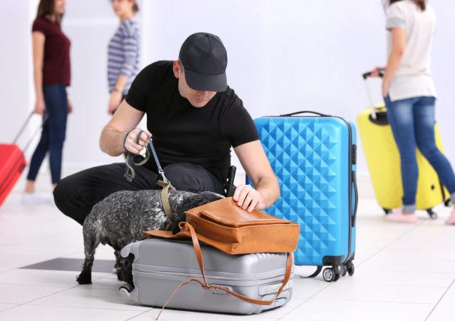 一中國公民試圖用行李運死鳥