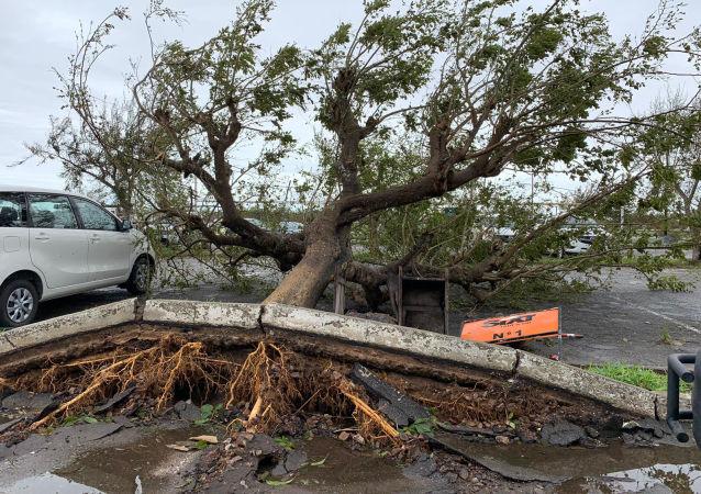 聯合國秘書長:氣旋「伊代」致死700多人 死亡人數很有可能上升