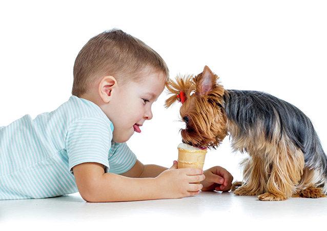 哪些犬種最適合孩子?