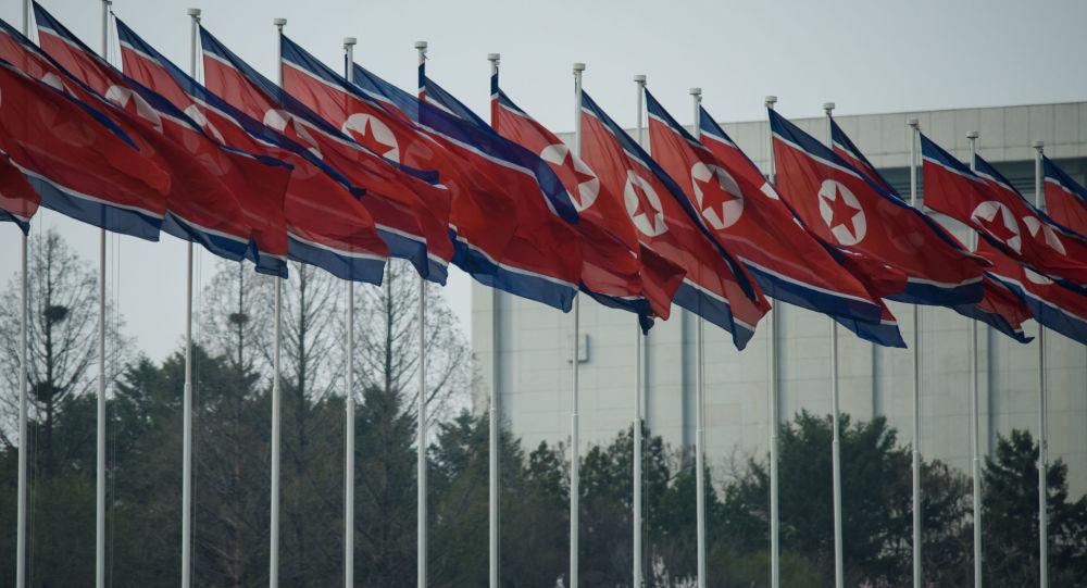 朝鮮媒體在金日成去世25週年之際呼籲國民建設經濟強國