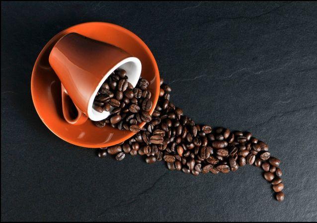 北極地區發現1902年的咖啡罐