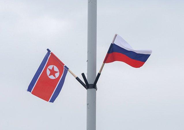 俄國防部:俄羅斯與朝鮮防務部門之間的合作日趨頻繁
