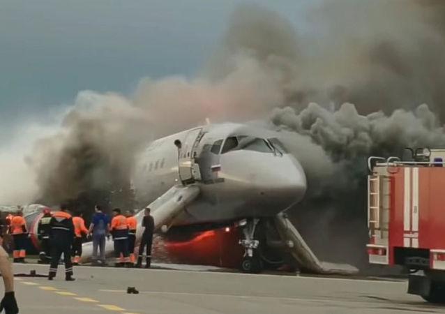 俄勞動部長:謝列梅捷沃機場飛機事故理賠工作已經啓動