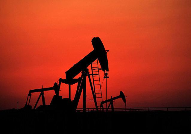 俄中高校將共同培養石油工程師
