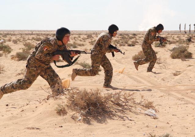 今年俄南部軍區將同埃及、巴基斯坦及亞美尼亞舉行軍事演習
